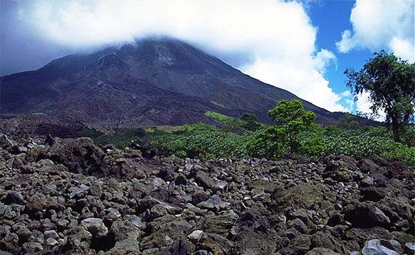 1993 Lava Field, Arenal Volcano